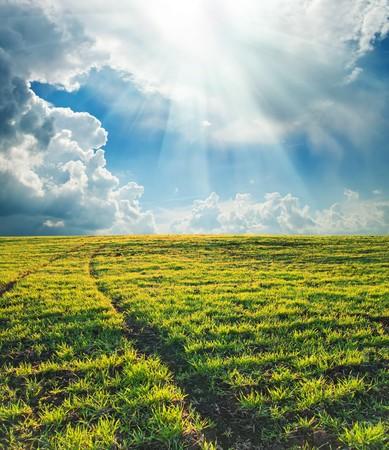 campo verde con la ruta de acceso del sol