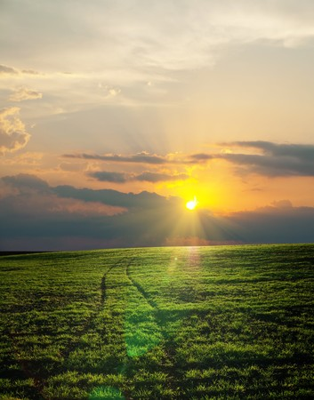 road in green field on sunset photo