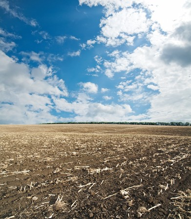 black ploughed field under blue cloudy sky after harvesting photo