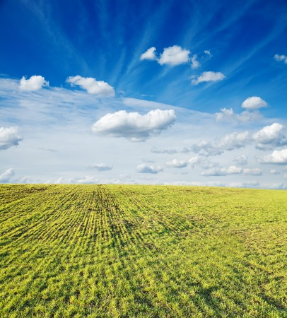 green field under cloudy sky Stock Photo - 7852171