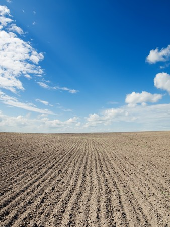 ploughed: ploughed field under blue sky