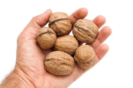 walnuts in hand Stock Photo - 8124860