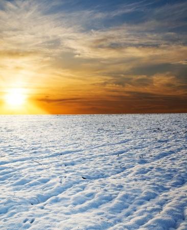 sunset over field under snow photo
