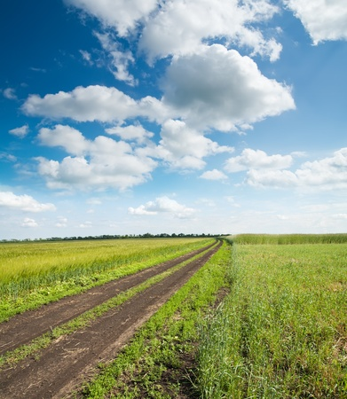 rural road in green field under cloudy sky Stock Photo - 8949166