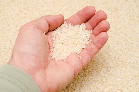 rice in hand Stock Photo - 8949154