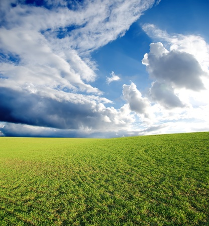 field with green grass under deep blue sky with clouds Stock Photo - 8949198