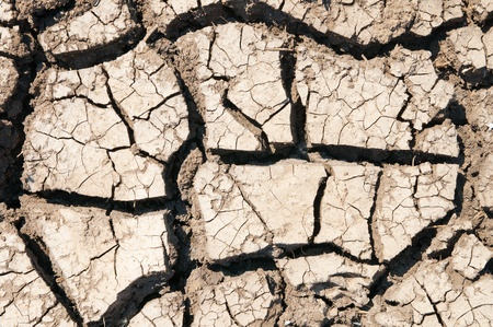 cracked earth as texture Stock Photo - 8949160