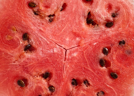 red slice of watermelon Stock Photo - 8949167