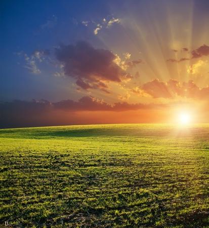 rayos de sol: campo verde agrícola y la puesta de sol rojo Foto de archivo