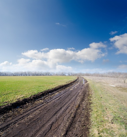 rural road in spring under cloudy sky Stock Photo - 9086285