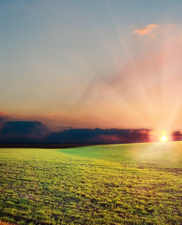 sunset over green agriculrural field Stock Photo - 9086284