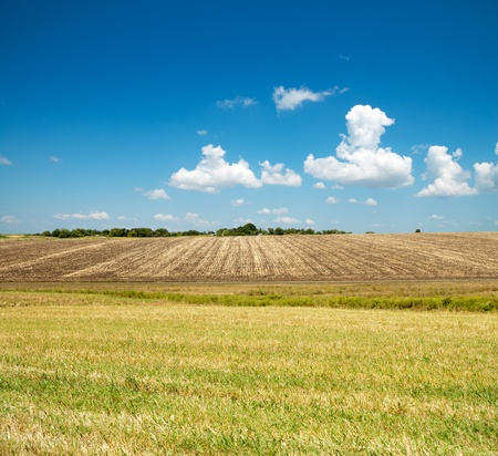 ploughed and green field under blue cloudy sky photo
