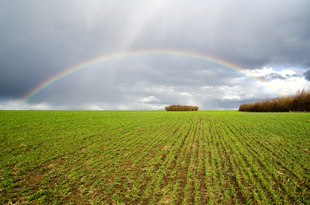 natural rainbow over green field Stock Photo - 9340135