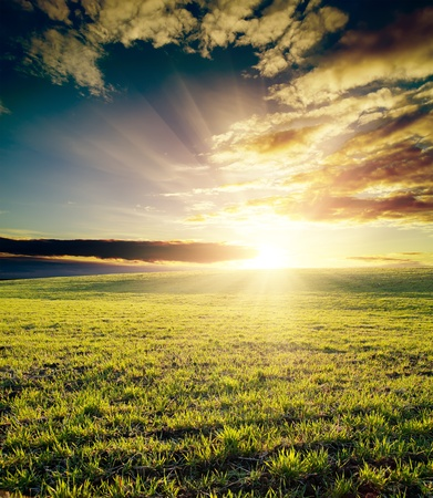 nobody: field of grass and cloudy sky on sunset Stock Photo