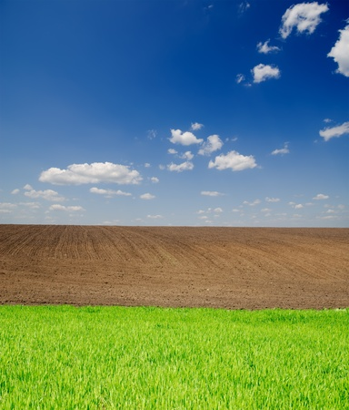 agricultural green and black field under deep blue sky with clouds photo