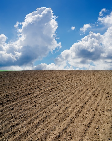 ploughed field photo