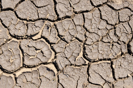 dry cracked earth as texture photo