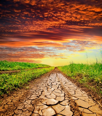 arid: cracked rural road in green grass and cloudy sky