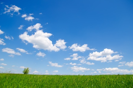 blue sky with clouds and green grass Stock Photo - 9623538