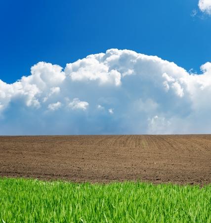 green, black, white and blue landscape Stock Photo - 9623449