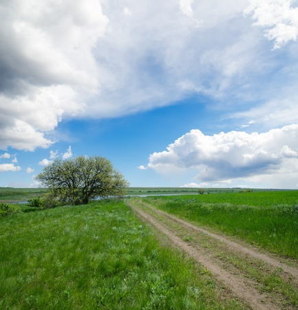 rural road under cloudy sky with tree photo