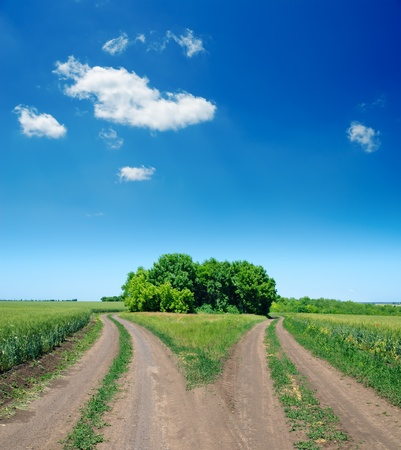 dirt road: two rural road in green field Stock Photo
