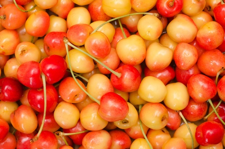 red and yellow cherry as background Stock Photo - 9877427
