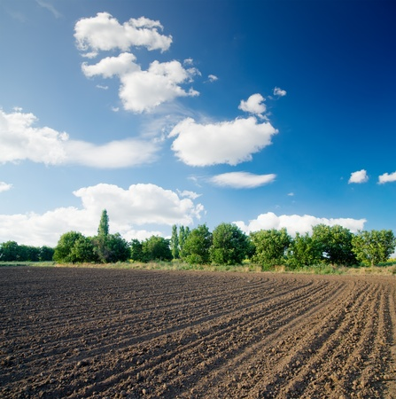 ploughed field: ploughed field Stock Photo