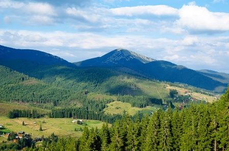 Beautiful green mountain landscape with trees in Carpathians Stock Photo - 10248372