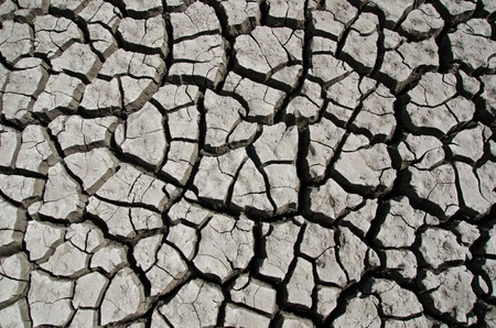 dry earth as texture Stock Photo - 10432373