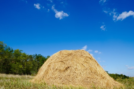stack of straw under deep blue sky Stock Photo - 10706418