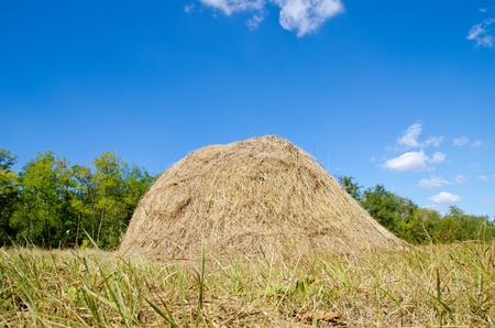 stack of straw under deep blue sky Stock Photo - 10896073