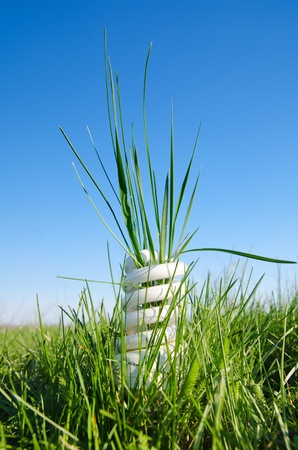 low glass: energy saving lamp in green grass under blue sky Stock Photo