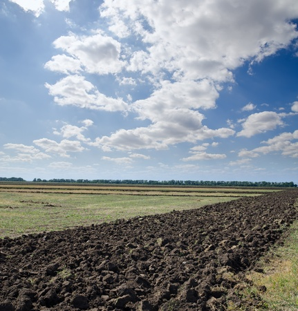 ploughed: ploughed field after harvesting
