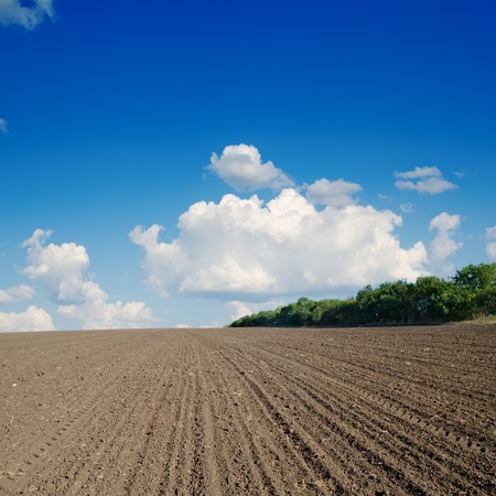 black ploughed field under blue sky photo