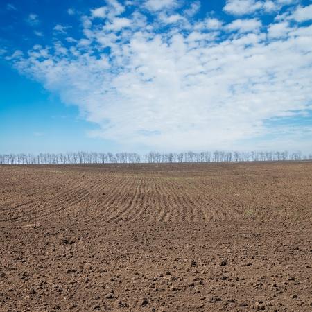ploughed field: black ploughed field under deep blue sky