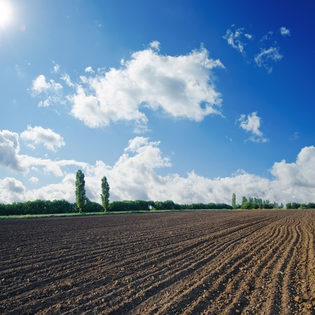 humus: black ploughed field under blue sky with sun Stock Photo