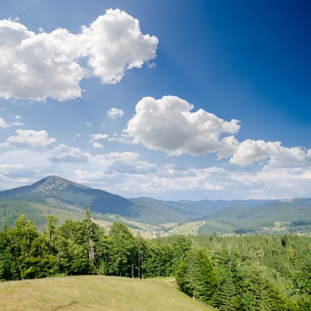 carpathian mountains: Carpathian mountains in summer, Bukovel region, Ukraine