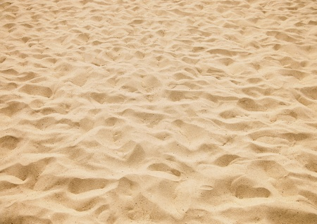 texture of yellow sand on the beach photo