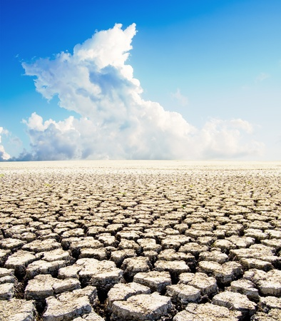 land with dry cracked ground under blue sky photo