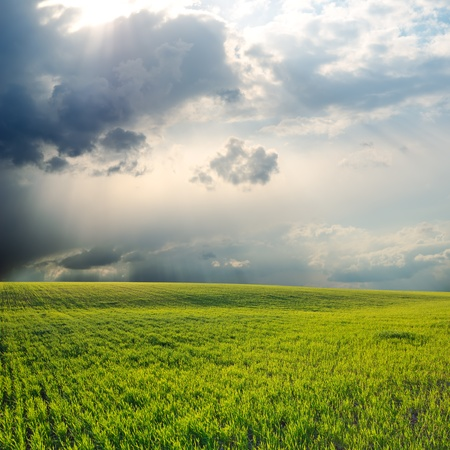 dramatic sky over green field Stock Photo - 12355805