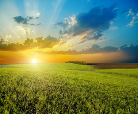 fantasy landscape: sunset over agricultural green field Stock Photo
