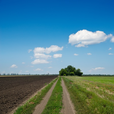 rural road to horizon under cloudy sky photo