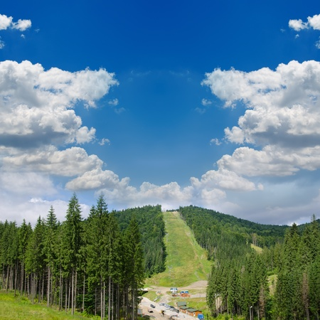 Beautiful green mountain landscape with trees in Carpathians Stock Photo - 12860868