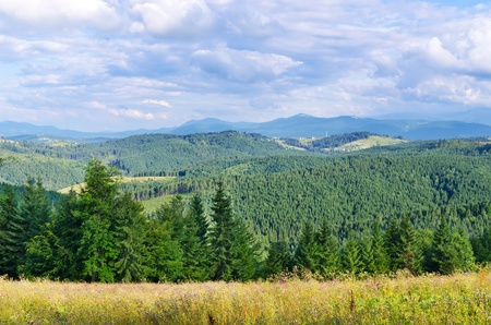 Beautiful green mountain landscape in Carpathians under dramatic sky Stock Photo - 13232519
