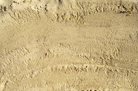 sand closeup as texture photo