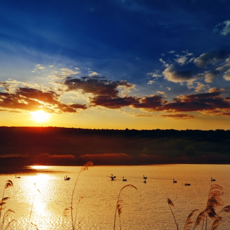 dream lake: dramatic sunset over river with swans Stock Photo
