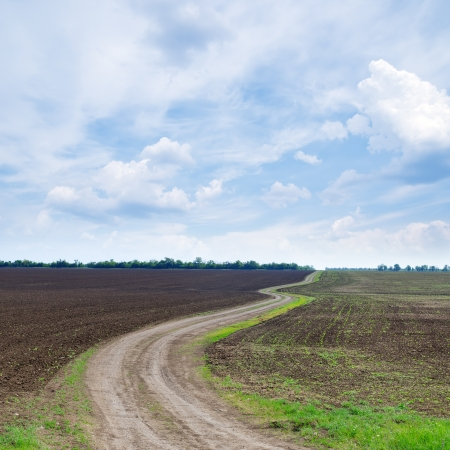 dirt road: cloudy sky and winding path