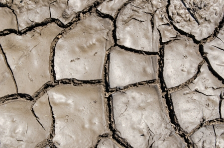 wet earth as texture photo