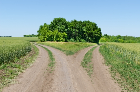 turn away: two rural road beetwen fields Stock Photo